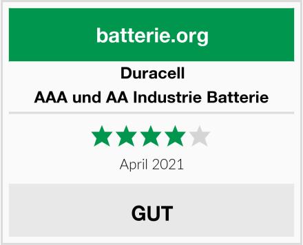 Duracell AAA und AA Industrie Batterie Test