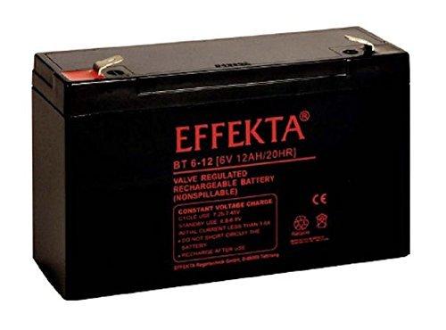 Effekta AGM Akku Batterie Typ BT 6-12 6V 12Ah